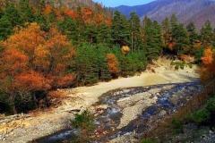 Осенняя природа Грузии